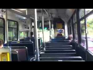 255 bus