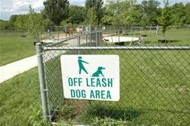 offleash